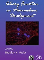 Ciliary Function in Mammalian Development