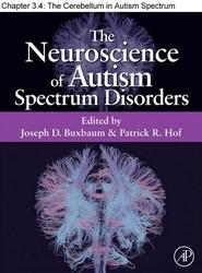 Chapter 22, The Cerebellum in Autism Spectrum Disorders