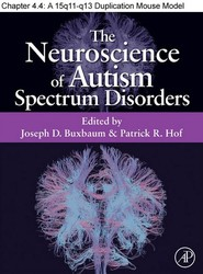 Chapter 32, A 15q11–q13 Duplication Mouse Model of Autism Spectrum Disorders