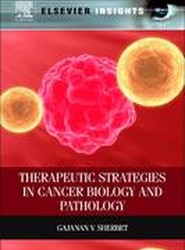 Therapeutic Strategies in Cancer Biology and Pathology