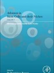 Hematopoietic Stem Cell Niche