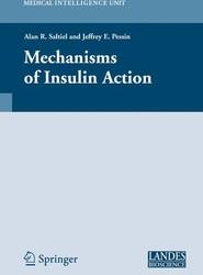 Mechanisms of Insulin Action