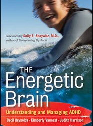 The Energetic Brain