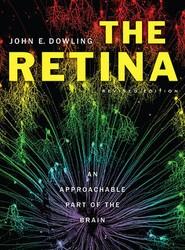The Retina