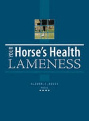 Your Horses Health Lameness