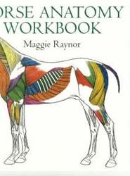 Horse Anatomy Workbook