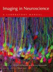 Imaging in Neuroscience