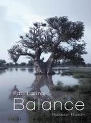 Facilitating Balance
