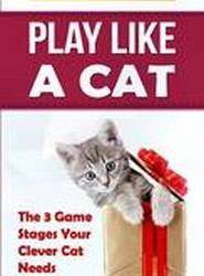 Play Like a Cat