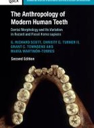 The Anthropology of Modern Human Teeth