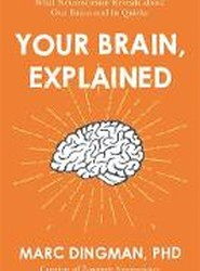 Your Brain, Explained