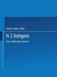 H-2 Antigens
