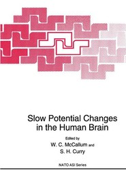 Slow Potential Changes in the Human Brain
