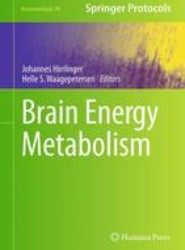 Brain Energy Metabolism