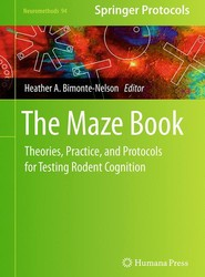 The Maze Book