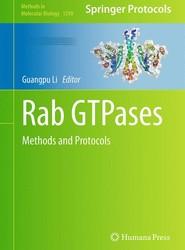 Rab GTPases