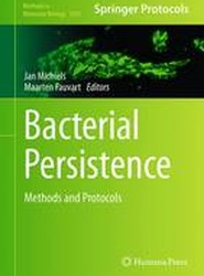 Bacterial Persistence