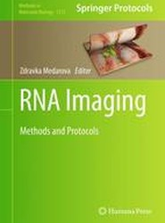 RNA Imaging