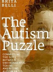 The Autism Puzzle