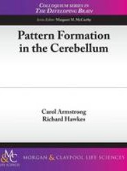 Pattern Formation in the Cerebellum
