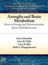Astroglia and Brain Metabolism