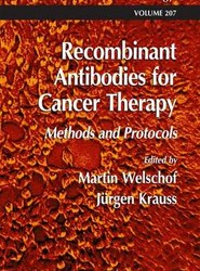 Recombinant Antibodies for Cancer Therapy
