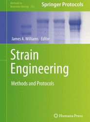 Strain Engineering