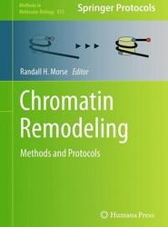 Chromatin Remodeling