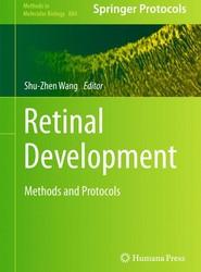 Retinal Development