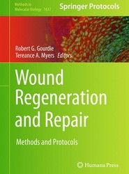 Wound Regeneration and Repair