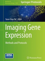 Imaging Gene Expression
