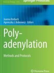 Polyadenylation