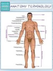 Anatomy Terminology (Speedy Study Guides)