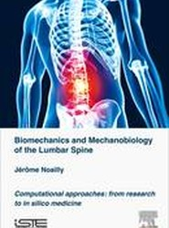 Biomechanics and Mechanobiology of the Lumbar Spine