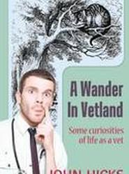 A Wander in Vetland