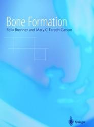 Bone Formation