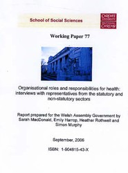 Organisational Roles and Responsibilities for Health - Interviews with Representatives from Statutory and Non - Statutory Sectors