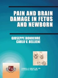 Pain and Brain Damage in Fetus and New Born