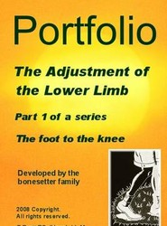 Portfolio the Adjustment of the Foot to the Knee: Pt.1