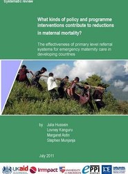 What Kinds of Policy and Programme Interventions Contribute to Reductions in Maternal Mortality?