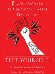 Beta-Lactamases in Gram-negative Bacteria - Test Yourself