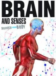 Brain and Senses
