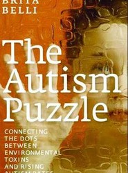 The Autism Puzzle: