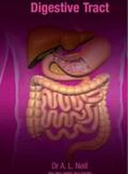 A to Z of the Digestive Tract