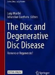 The Disc and Degenerative Disc Disease