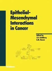 Epithelial—Mesenchymal Interactions in Cancer