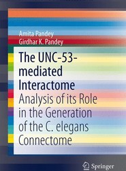 The UNC-53-mediated Interactome