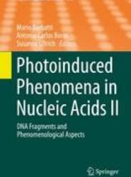 Photoinduced Phenomena in Nucleic Acids II