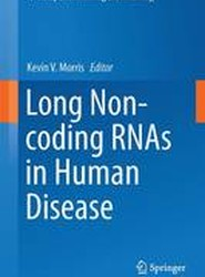 Long Non-coding RNAs in Human Disease