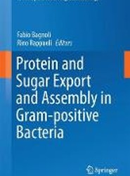 Protein and Sugar Export and Assembly in Gram-Positive Bacteria